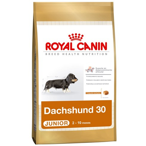 royal canin dachshund 30 junior casa da ra o. Black Bedroom Furniture Sets. Home Design Ideas