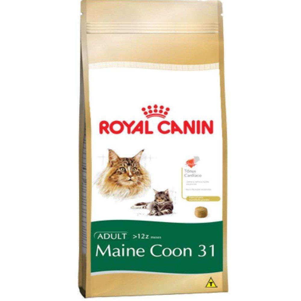 ra o royal canin feline breed nutrition maine coon 31 casa da ra o. Black Bedroom Furniture Sets. Home Design Ideas